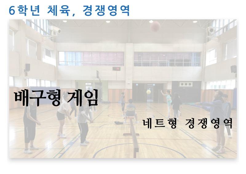 에듀콜라-6학년-체육-배구형게임.jpg